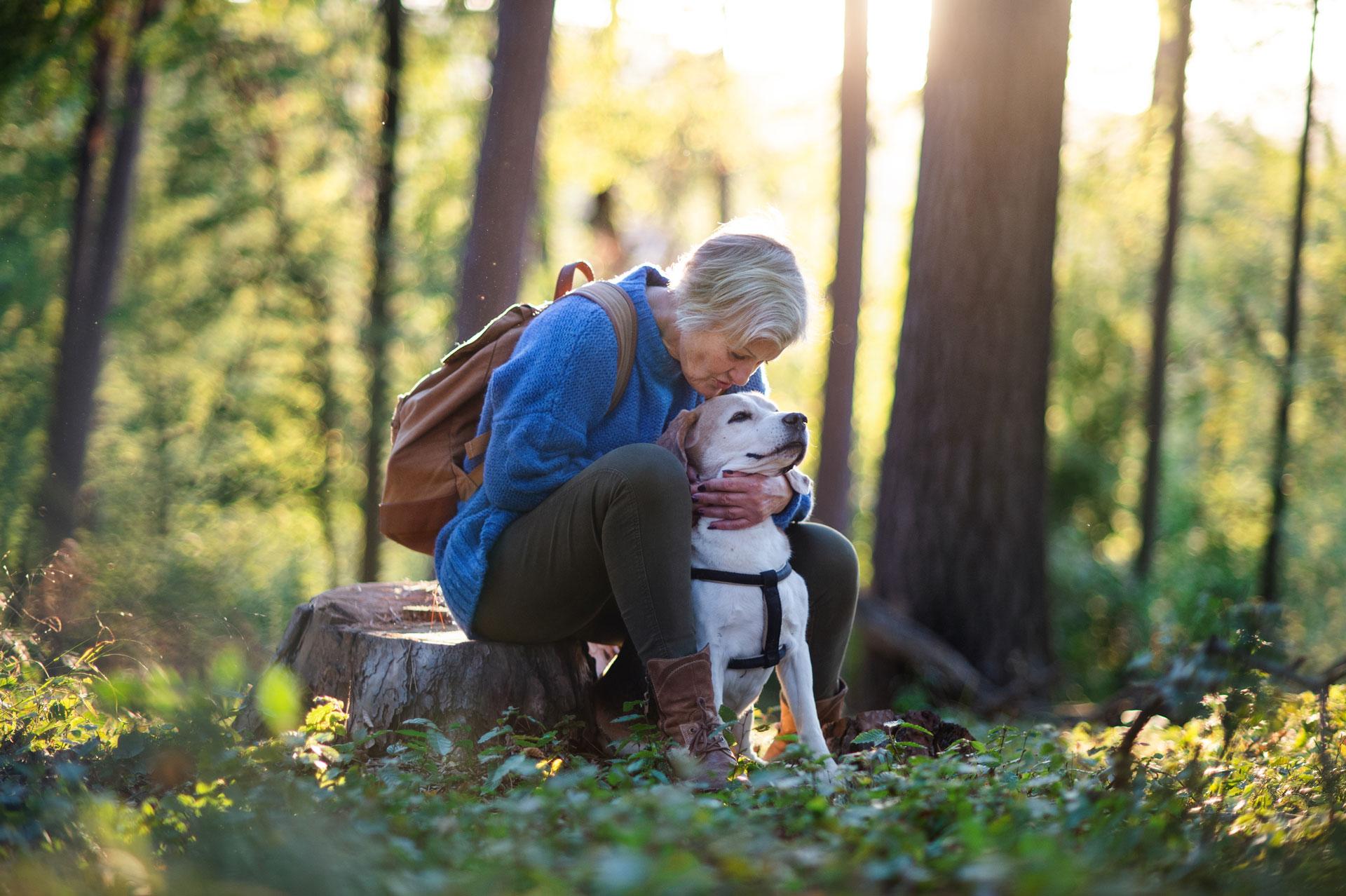 Dame koser med hunden sin i skogen. Foto